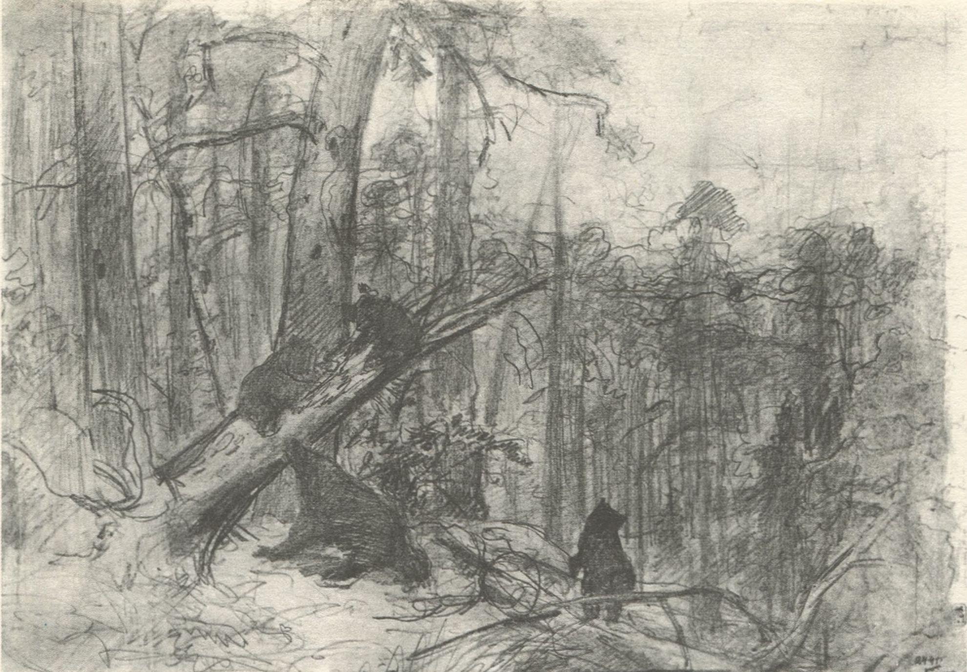 И.И. Шишкин. Утро в сосновом лесу. Эскиз картины 1889 г. (Ivan Shishkin. Morning in a Pine Forest. Sketch for the similarly entitled painting of 1889)