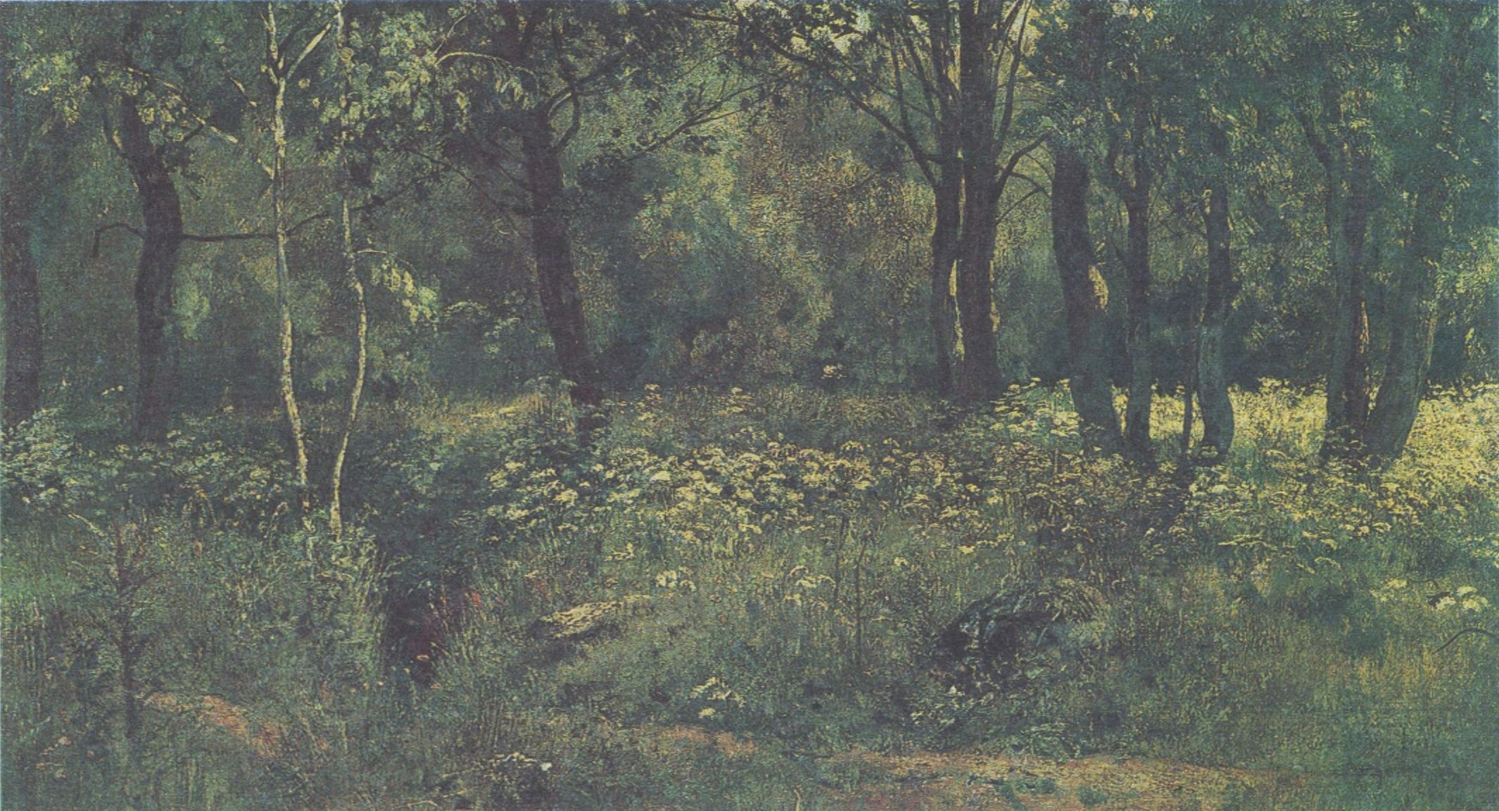 55. Лесная поляна. Этюд. Начало 1890-х гг. (The Glade. Study. Early 1890s)